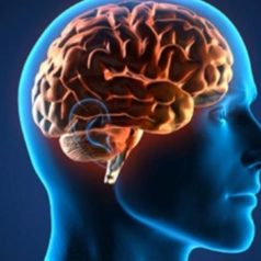 La esquizofrenia y el trabajo no remunerado de los cuidadores