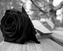 ¿Cuáles son nuestras reacciones ante la pérdida de un ser querido?